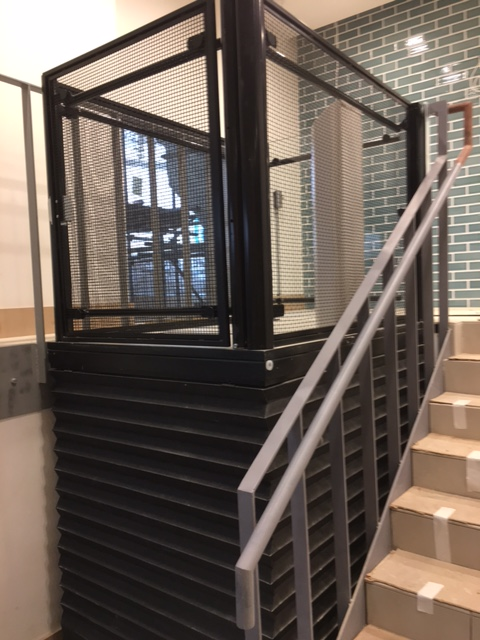 Commercial Platform Lift